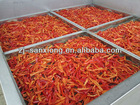 chili drying machine