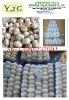 high quality garlic factory export directly