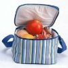 picnic non woven insulated ice cooler bag