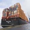 sea freight logistics service from shanghai to OPENHAGEN,ROTTERDAM,LOSANGELES