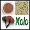 Eutherapeutic Lingzhi Cracked Spore Powder