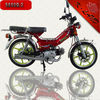 cheap and cheerful 48CC pocket bike with SS48Q-2