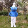 2012 top sale smurf mascot costume