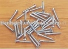 Wooden Screws