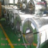 supply hot dip galvanized steel coil