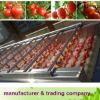 cherry / fresh tomato processing machine
