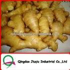 2012 market prices for ginger