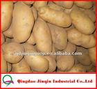 "JQ ""China Fresh Potato"" Fresh China Garlic Fresh 2012 Baby Potato"