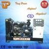 Perfect price 8kw to 36kw Yangdong diesel generator set