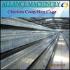 40 Laying Chicken Cage For Poultry Farm