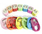 Paypal accept colorful US charger for iphone 4 with USB cable