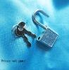 mini lock