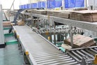 USG Roller Conveyor