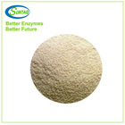 Powder Xylanase Enzyme for Animal Feed Industry