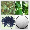 Hight Quality Low Price Piperine