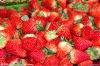 instant strawberry powder (suit for baking, drinks and any healthy foods)