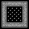 Black Paisley Bandanas-Dozen Packed AND Customized