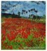 Rep Oil Painting Canvas Van Gogh 20x24 Field of Poppies
