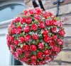 Artificial 40cm Plastic Red Rose Flower Ball Garden Decoration ---- Largest factory