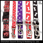 dual dog collar and leash , led dog collar