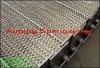 ss chain link conveyor belt(factory)