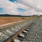 Professional Railway Transport to Ulan Bator,Mongolia