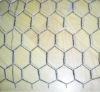 Electro galvaniazed chicken wire fabric chicken wire mesh