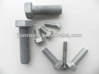 AS1110 Hex Bolts