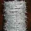Stainless Steel Barbed Wire(Direct Factory)
