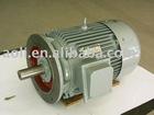 Three Phase Asynchronous Motor