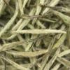 Organic White Tea--Silver Needle,White Silver Needle Tea