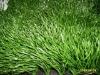 Fake Grass for Football