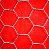 chicken wire mesh (best price)