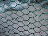 hexagonal wire mesh (best price)