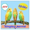 Singing Parrot with Sensor