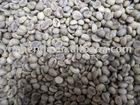 green coffee beans grade AA screen 18