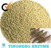 Shrimp feed additives; nutrition supplement
