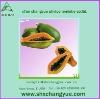 factory price papaya seeds extract Powder