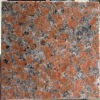 Red Granite Stone for Floor Tiles-- Maple Leaf Red