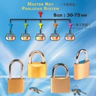Sell Master Key Padlock
