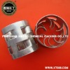 Stainless Steel Metal Pall Ring Packing