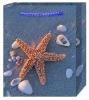starfish christmas paper bag