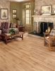 Waterproof ,enviromently-friendly WPC Flooring