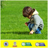Artificial grass for kids playfield