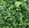 fresh IQF broccoli