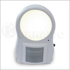PIR Sensor Light