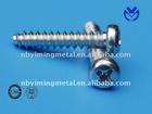 Cross recessed small pan head screw