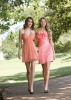 New Arrival Short Pink Affordable Bridesmaid Dresses (ABG245)