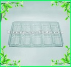 2pieces of food blister tray