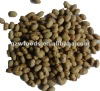 roasted salted soybean